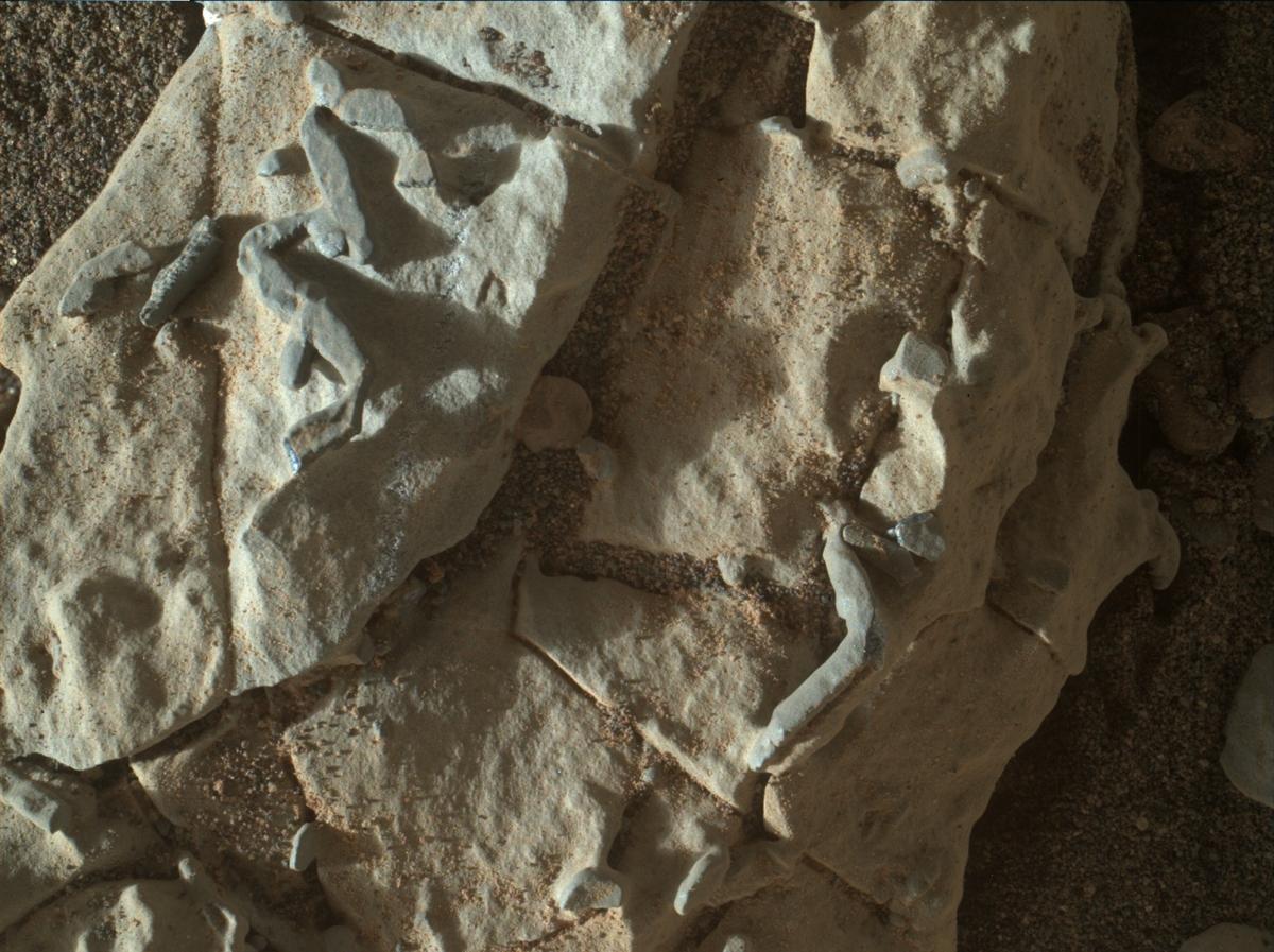 2018-trace-fossils-curiosity.jpg