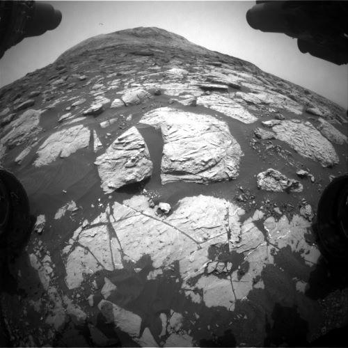 2020-1-july-curiosity.jpg