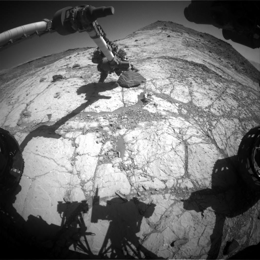 2020-curiosity-photo-8.jpg